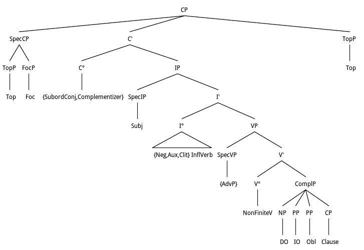 Tree representation of Topic Focus according to X-Bar theory and Complement syntax