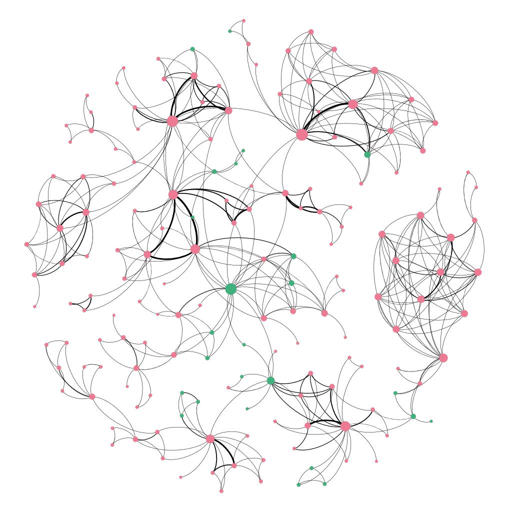 Componenti principali di CLiC-it nella rete di co-autori. I nodi rappresentano gli autori e sono colorati in base alla nazionalità italiana o meno delle loro affiliazioni (rosa se italiana, verde se straniera).