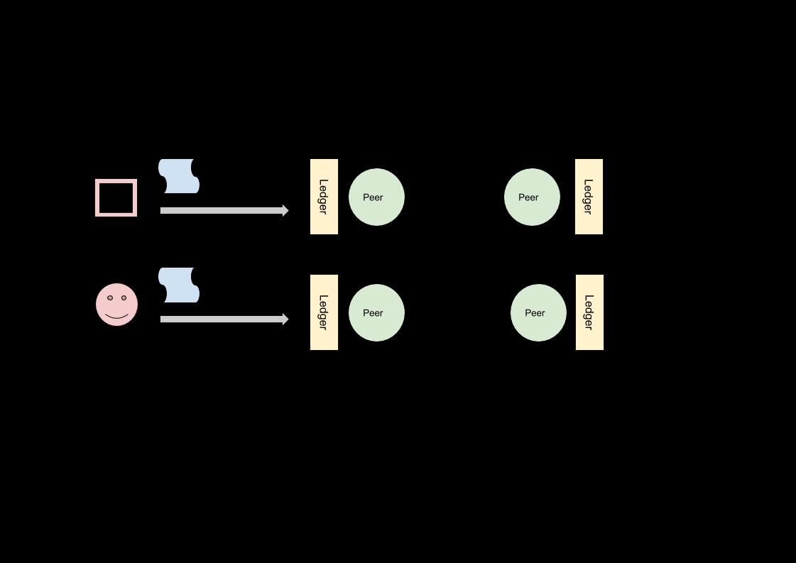 Immagine 8